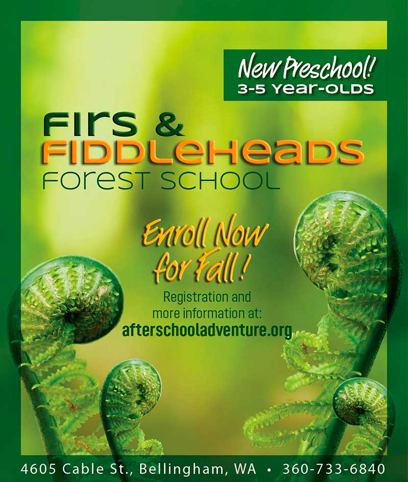Firs & Fiddleheads Forest School Open Forest/House